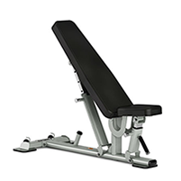Spirit Fitness Commerical ST800FI Multi-Angle Bench.